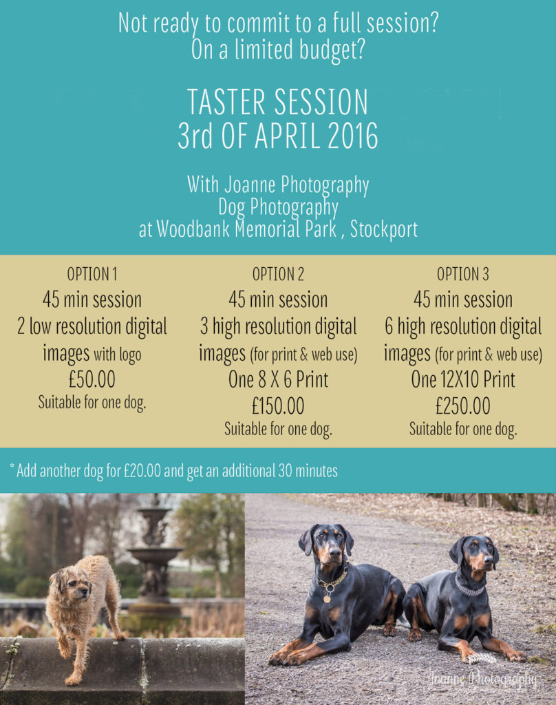 Book your session with Joanne Photography