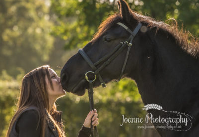Hazel Grove Horse